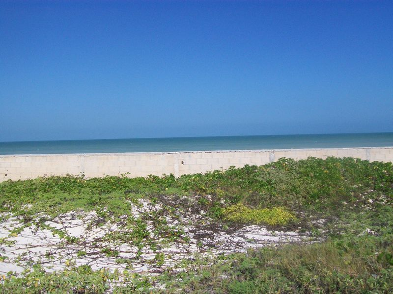 Massive beach front lot Chuburna 20 x 50 m