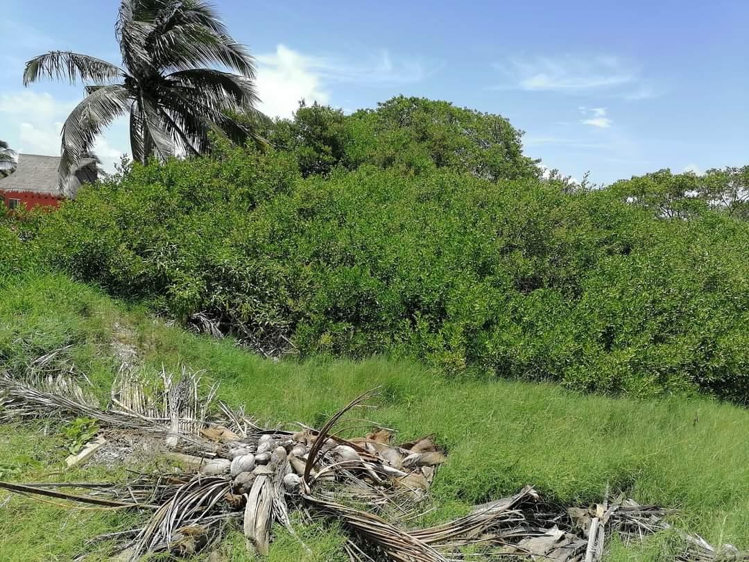Terreno en Venta en Huaymitun